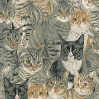 Patchworkstoffe Cats the Way I like it